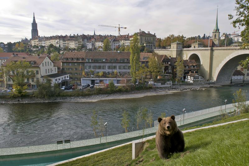 A local resident in Bern, Switzerland