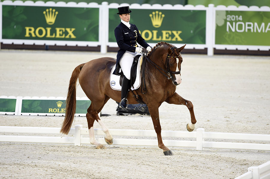 World Equestrian Games, Normandy 2014,