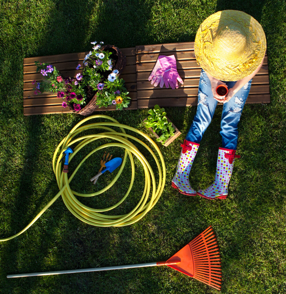 spring cleaning your garden