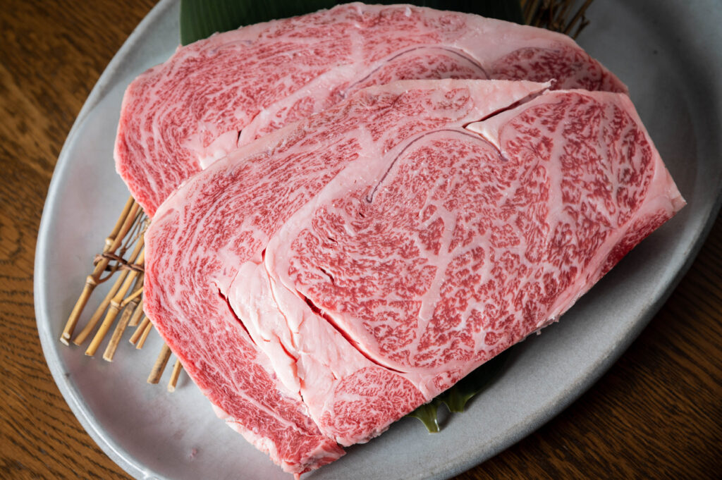 japanese marbled fatty wagyu ribeye beef