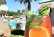 Ginger Spiced Watermelon Mojito Cocktail